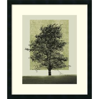 Harold Silverman Natures Shapes II Framed Art Print