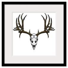 Whitetail Deer Skull Framed Prints  Whitetail Deer Skull Framed