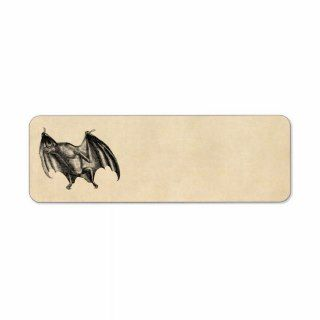 Vintage 1800s Vampire Bat Illustration   Halloween Custom Return