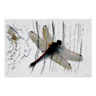 Dragonfly Art Photography Print