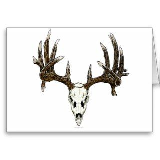 Whitetail deer skull 1 greeting cards