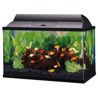 Aquarium nano wood air stone protein skimmer for marine for 10 gallon fish tank petsmart