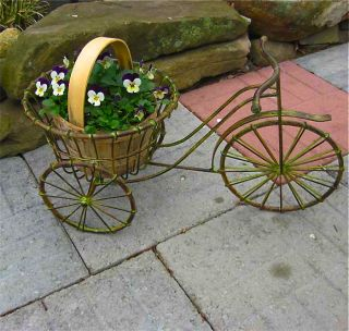 Tricycle Plant Stand Wrought Iron Antique Finish