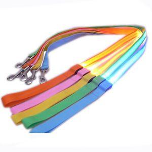 Nylon LED Flashing Pet Leash Rope Belt Harness Safety Lead w Safety LED Collar