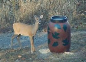 Aunt Molly's Gravity Deer Feeder Also Turkey and Hog Feeders Leaf Pattern