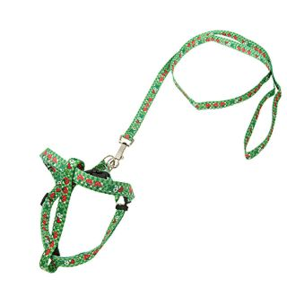 Dog's Pet's Puppy Nylon Pulling Harness Leash Rope Grn
