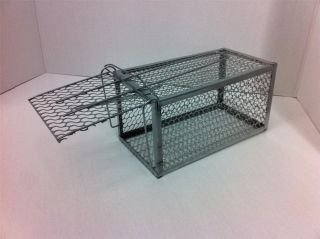 Ready to Use USA Seller Live Animal Trap Rat Mice Catch Cage Rodent Control