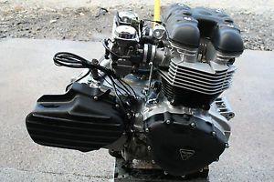 2004 Triumph America Motor Engine 790 C C