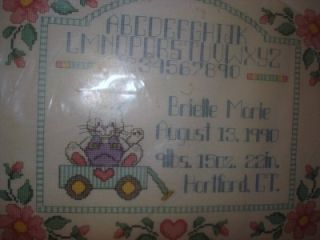 Janlynn New Baby Counted Cross Stitch Kit Personalized Gift Birth Announcement
