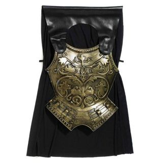 Adults Roman Gladiator Soldier Spartan Chest Plate Cape Fancy Dress Costume