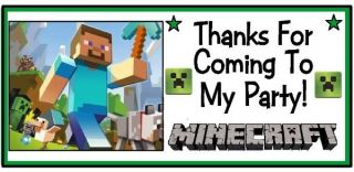 20 Minecraft Creepers Steve Pickaxe Birthday Party Thank You Stickers