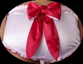 Champagne Pink Sissy Frilly Ruffle Edge Satin Full Panties Knickers Burlesque S