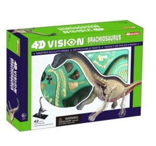 Brachiosaurus Anatomy Model Puzzle 4D Vision Kit 26094 Tedco Science Toys