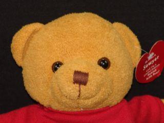 New Home Sweet Home Habitat for Humanity Sawyer Teddy Bear Plush Stuffed Animal