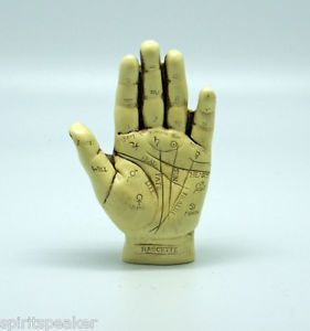 Palmistry Hand Gypsy Fortune Telling Learning Model Learn to Read Palms Wicca