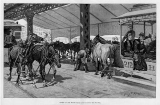 Horse Teams Pulling Street Cars Antique Horses Print
