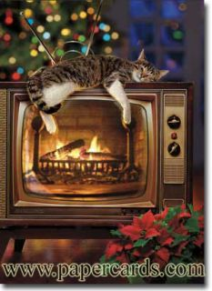 Cat on Yule Log TV 10 Funny Boxed Christmas Cards by Avanti Press