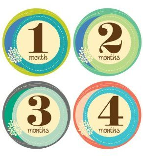 Lucy Darling Shop Baby Sticker   Baby Girl   Retro Numbers   Months 1 12: Baby