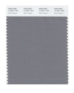 Pantone 17 3911 TCX Smart Color Swatch Card, Silver Filigree: Home Improvement