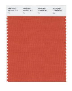 Pantone 17 1452 TCX Smart Color Swatch Card, Koi: Home Improvement