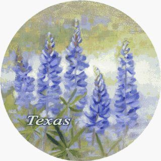 Bluebonnet Texas Coaster (Set of 4): Kitchen & Dining
