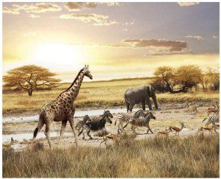 JP London MD4A169 10.5 Feet Wide by 8.5 Feet High African Animals Safari Plain Removable Full Wall Mural