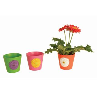 Wald Imports Ceramic Planter with Embossed Gerbera Daisy Design   Set of 6   Planters