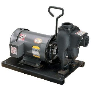 "Banjo 234PIE3 2"" Cast Iron Pump with 3.0 HP Three Phase Electric Motor: Sump Pumps: Industrial & Scientific"