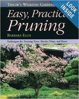 Taylor's Weekend Gardening Guide to Easy Practical Pruning: Techniques For Training Trees, Shrubs, Vines, and Roses (Taylor's Weekend Gardening Guides (Houghton Mifflin)): Barbara Ellis: 9780395815915: Books